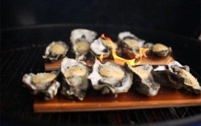 oysters-cedar-plank
